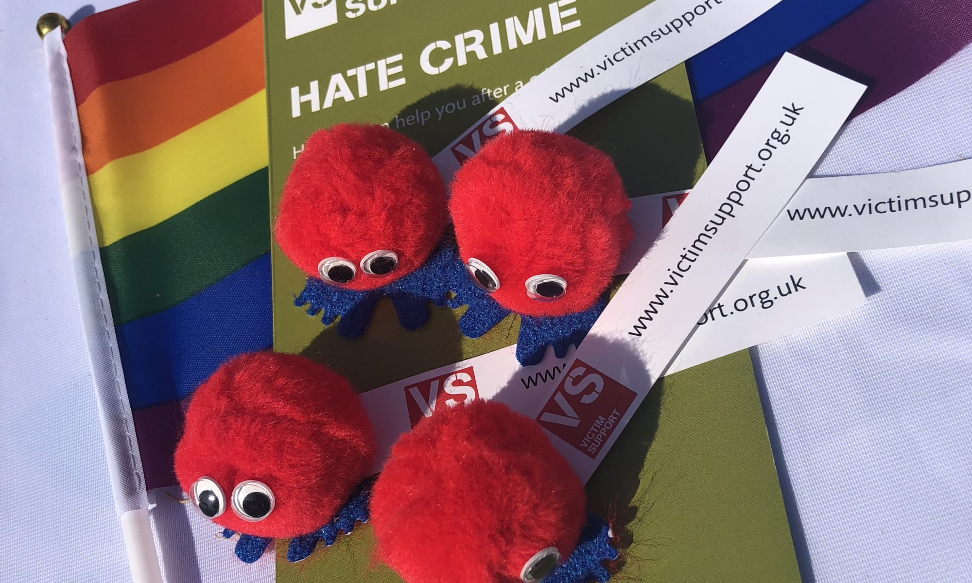 Hate crime leaflet, pride flag and logo bugs on a table